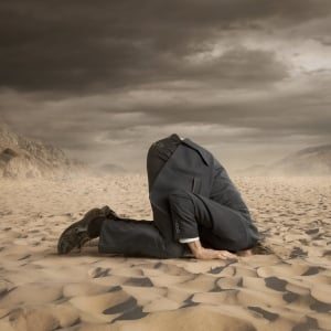 Innovation head in the sand